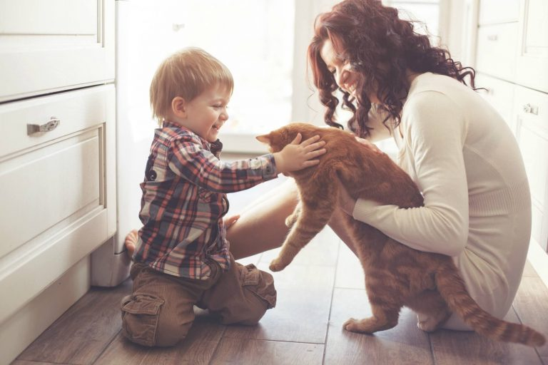 The Harmful Effects of Smoking Around Pets